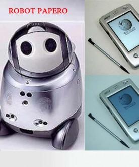 Máy Thông Dịch Tiếng Nhật Robot Papero